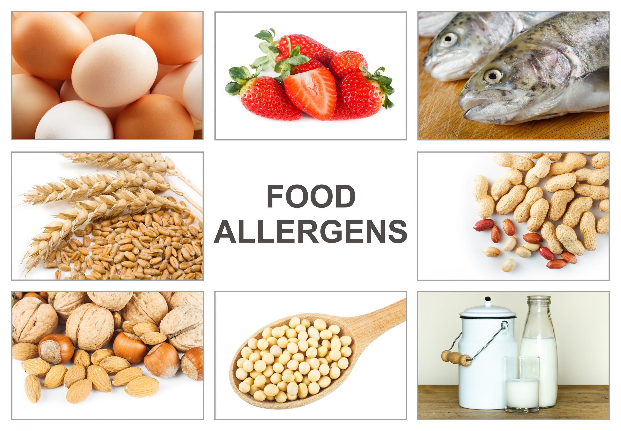 Allergen Awarenesss for Food Manufacturing