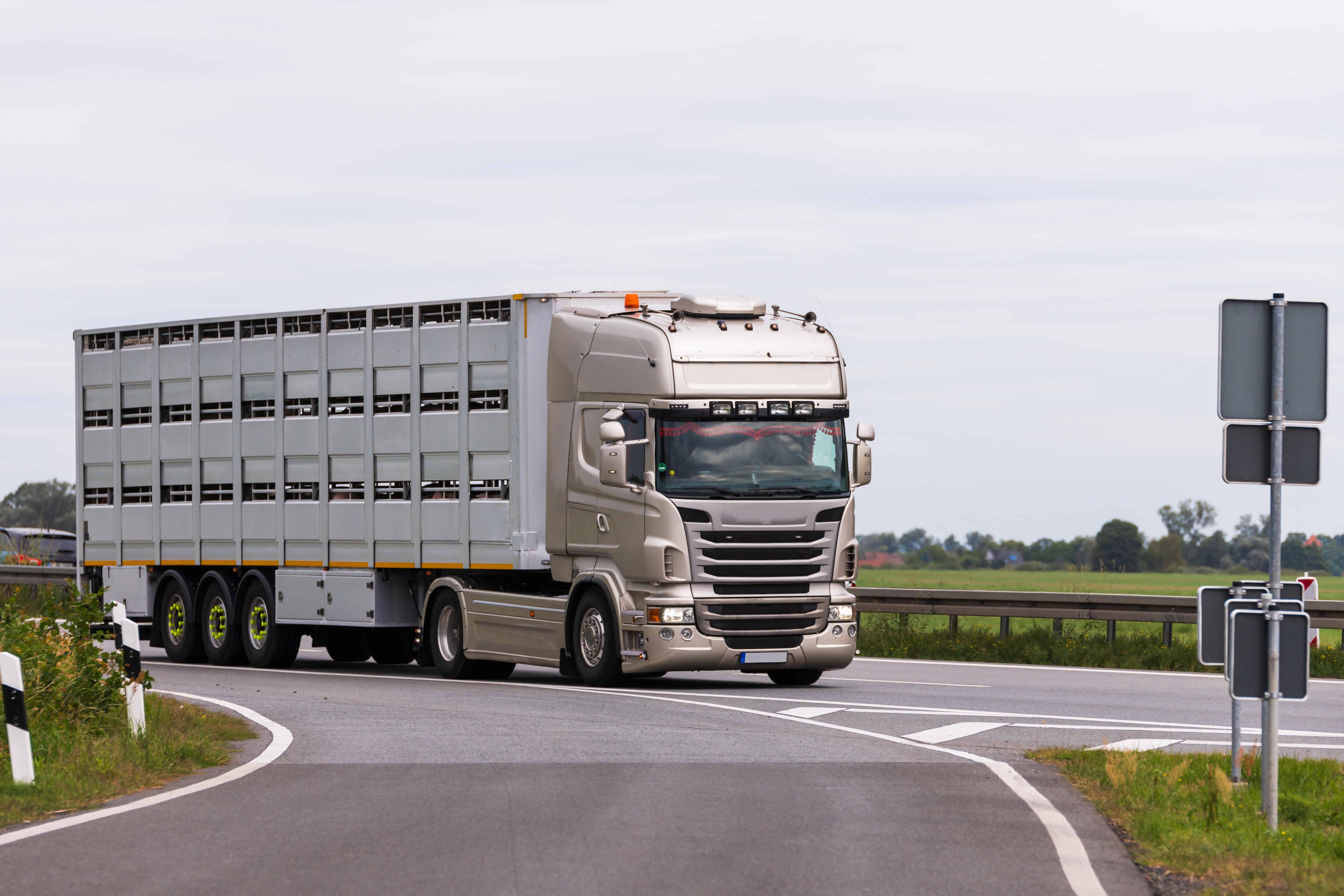Level 2 Award in Animal Transport by Road - Short Journey Ofqual Qualification number 501/1738